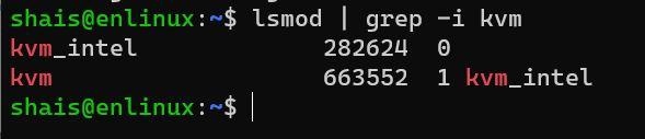 Check KVM Modules in Ubuntu Linux