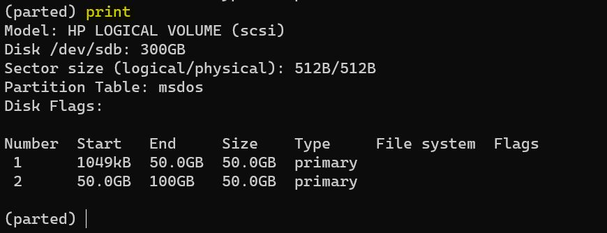 Delete a Partition In Linux